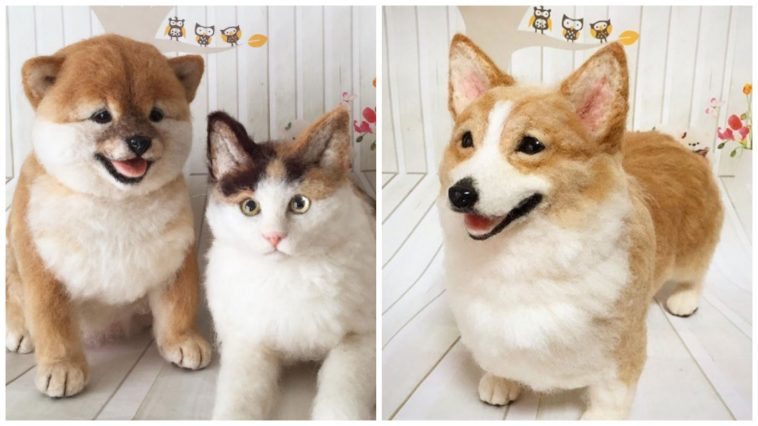 You Think These Pets Are Real? Take A Closer Look