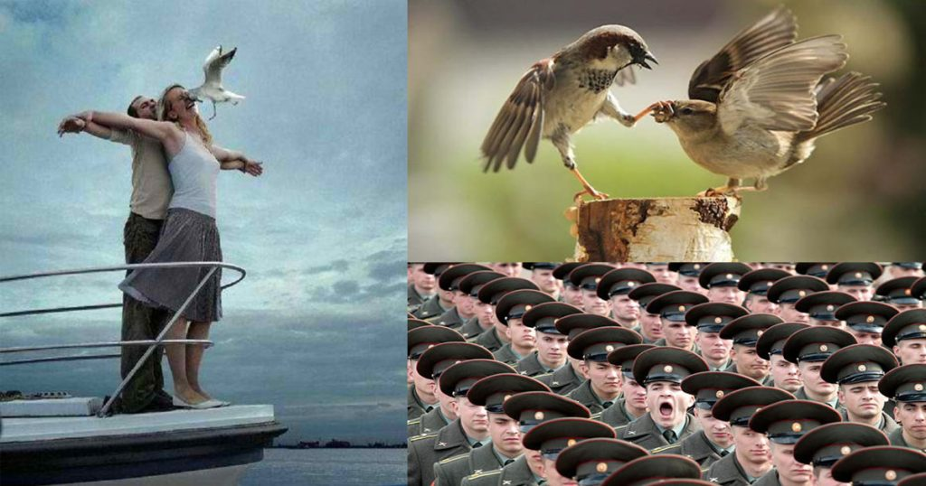 Perfectly Timed Pics That Will Make You Look Twice